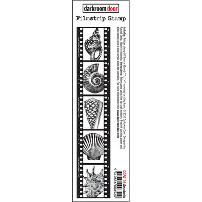 Filmstrip Stamp - Seashells