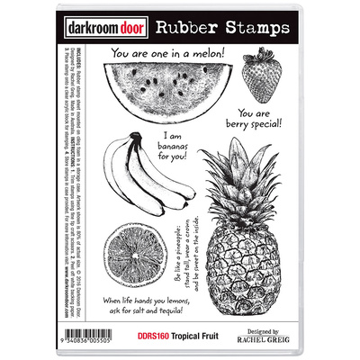 Rubber Stamp Set - Tropical Fruit